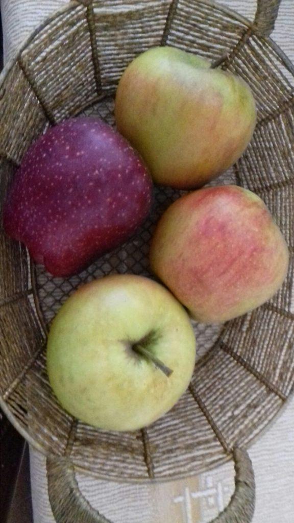 Αφράτη, πανεύκολη μηλόπιτα - 7