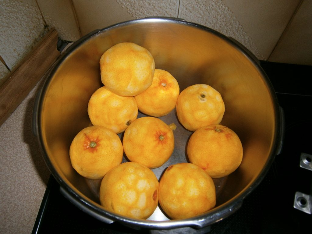 Γλυκό Πορτοκάλι - 5