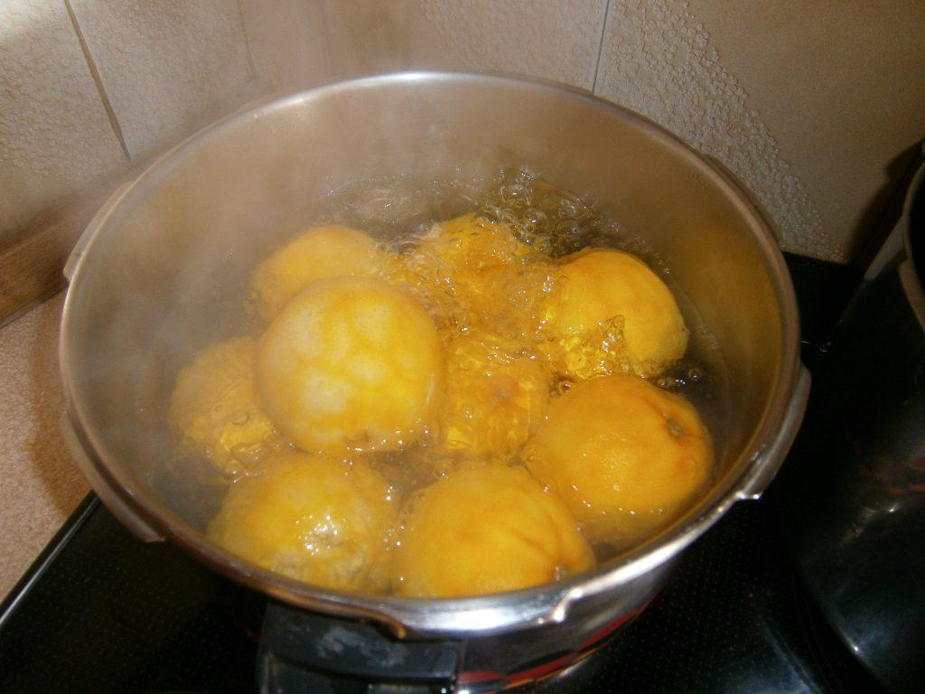Γλυκό Πορτοκάλι - 9