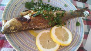 Λαυράκι με σάλτσα μαγιονέζας - Συνταγή - ηχωμαγειρέματα