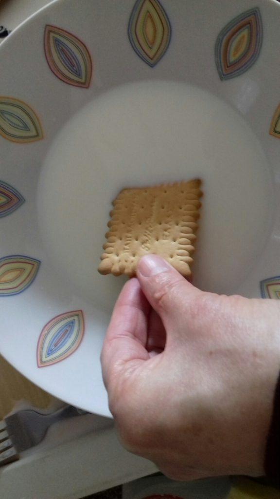 Τεμπελογλυκό με μπισκότα - 10