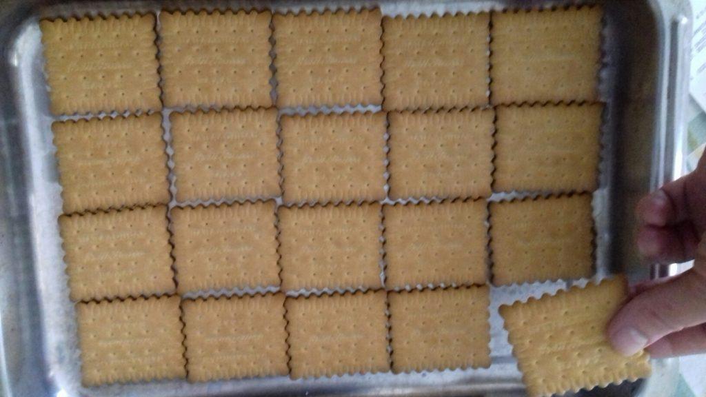 Τεμπελογλυκό με μπισκότα - 11