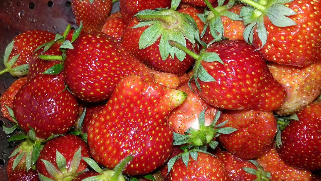 Γλυκό Φράουλα - 1