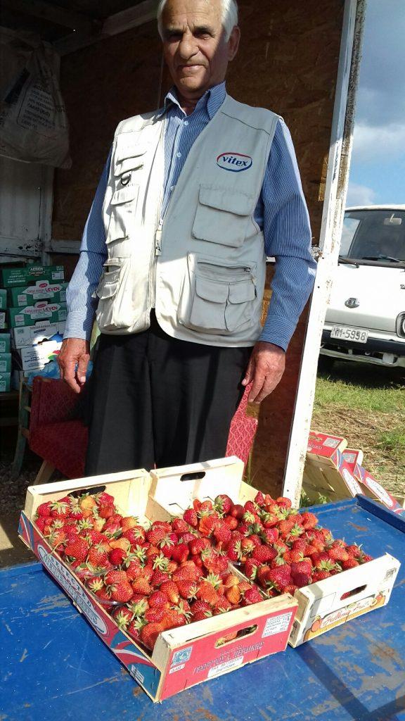 Γλυκό Φράουλα - 1β