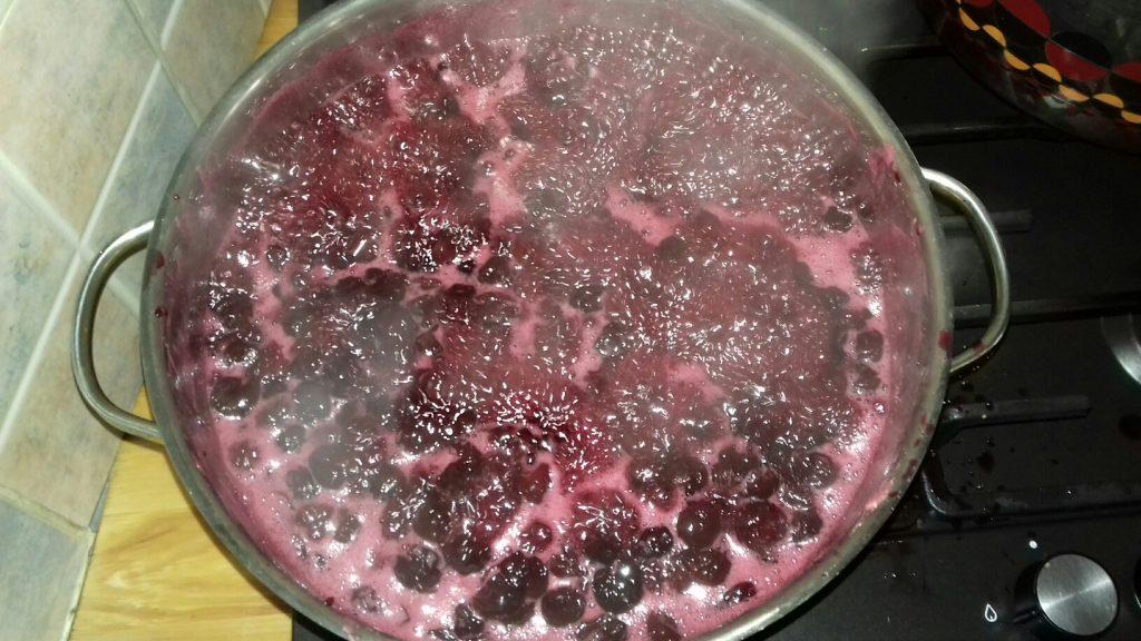 Γλυκό βύσσινο - λικέρ βύσσινο - βυσσινάδα - 26