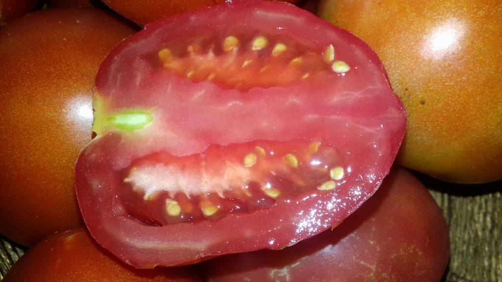Σάλτσα ντομάτας - 1ος τρόπος - 23