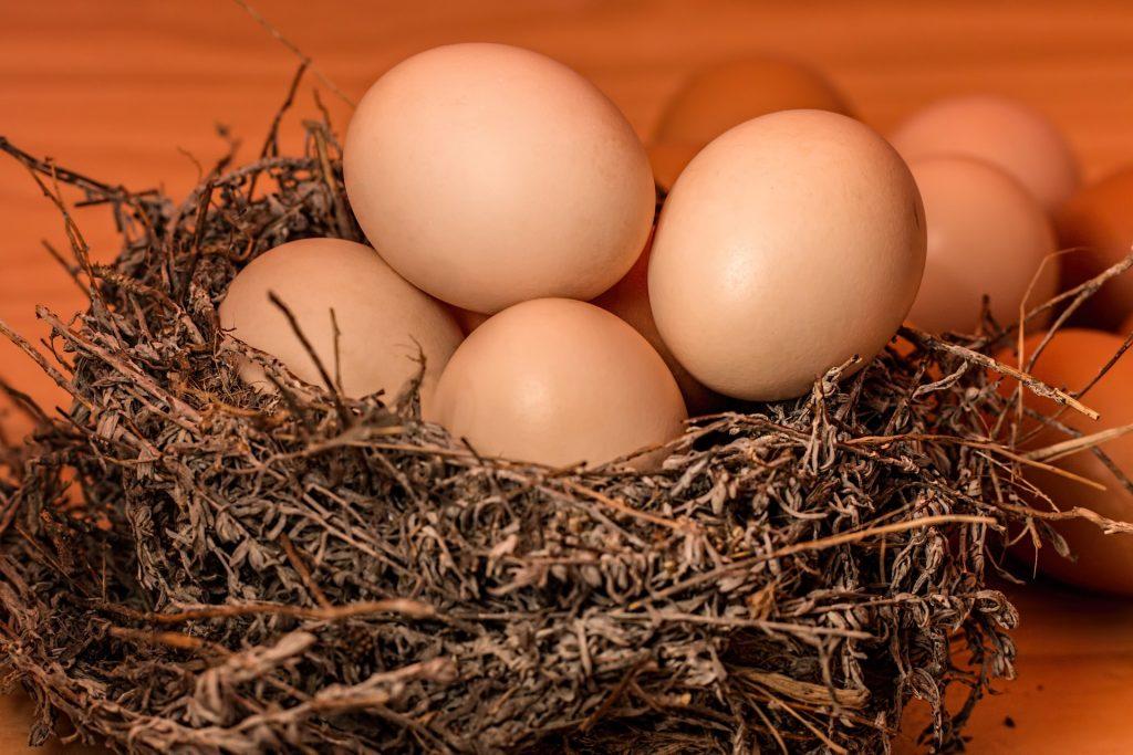 Τα κοκκινιστά αυγά της Ευτυχίας - 15