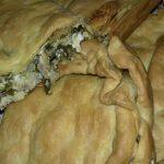 Κρεατόπιτα με τα περισσεύματα από το πασχαλινό αρνάκι με φύλλα κουρού