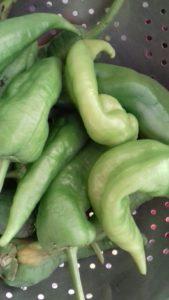 Φλωρινιώτισσες πιπεριές - 6