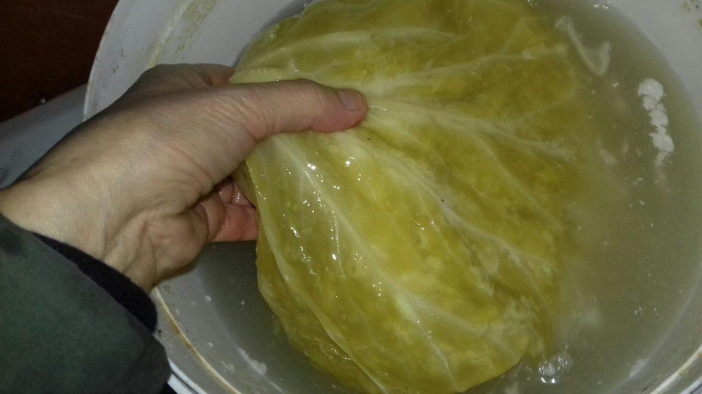 Τουρσί λάχανο - αρμιά - 19
