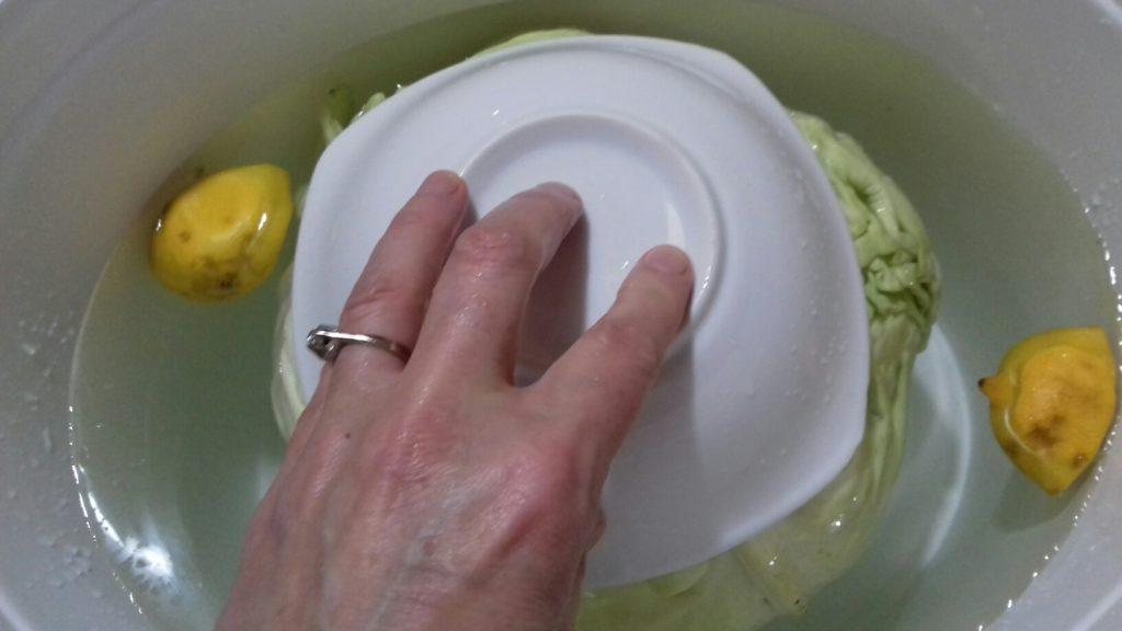 Τουρσί λάχανο - αρμιά - 29