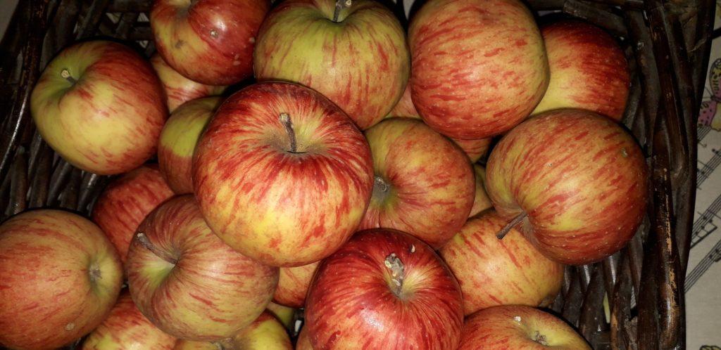 Γλυκό μήλο - 1