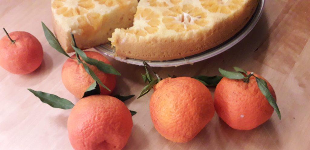 Μανταρινάτα - Γλυκό με μανταρίνι - 46