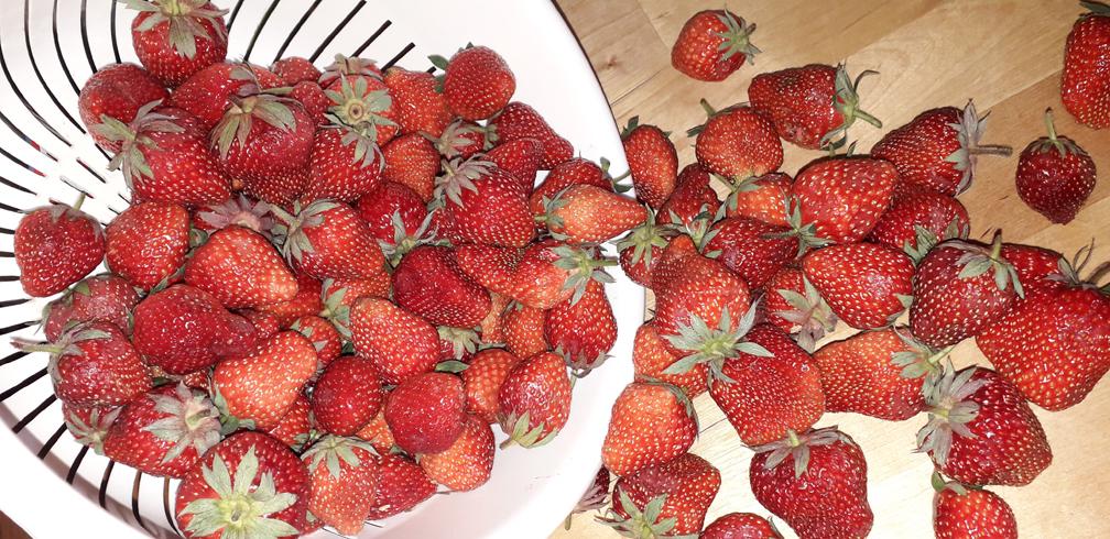 λικέρ φράουλα - 2