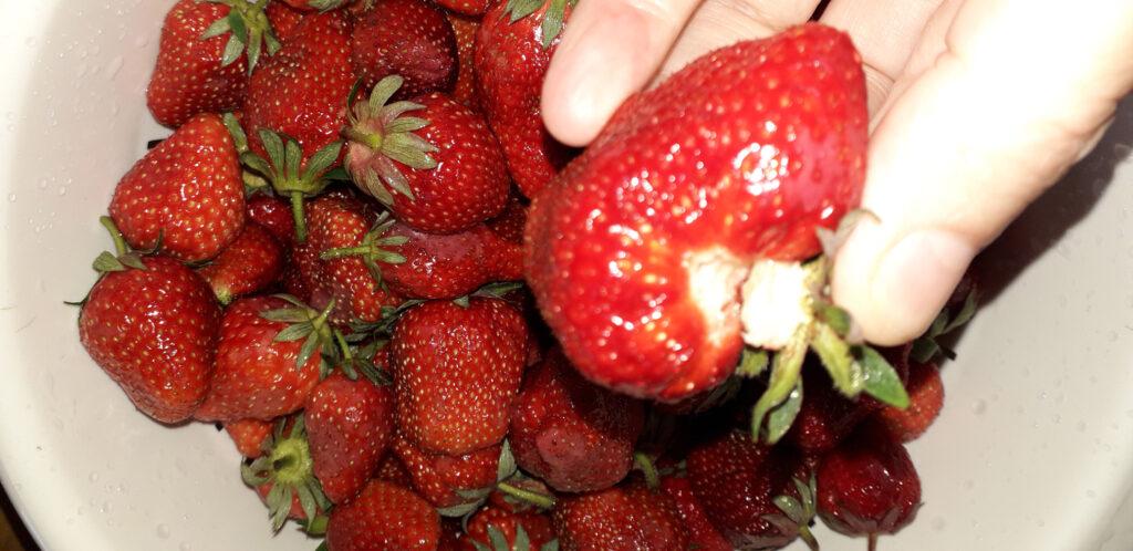 λικέρ φράουλα - 3