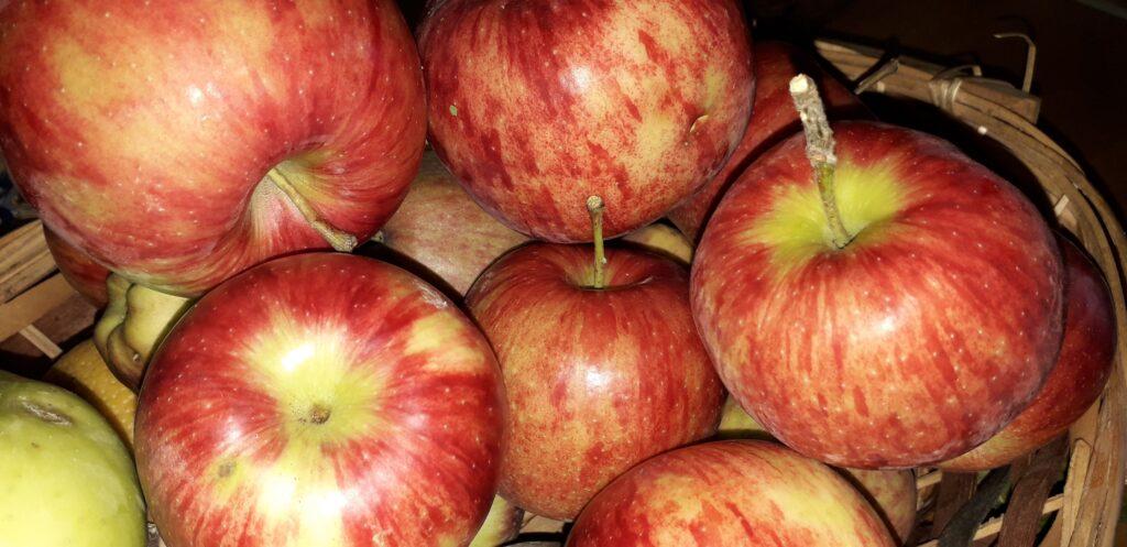 αφράτο γλυκό μήλου με παντεσπάνι στον φούρνο - 30