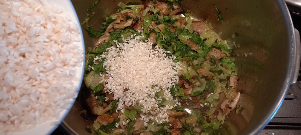 μαγειρίτσα νηστίσιμη χορτοφαγική - 20