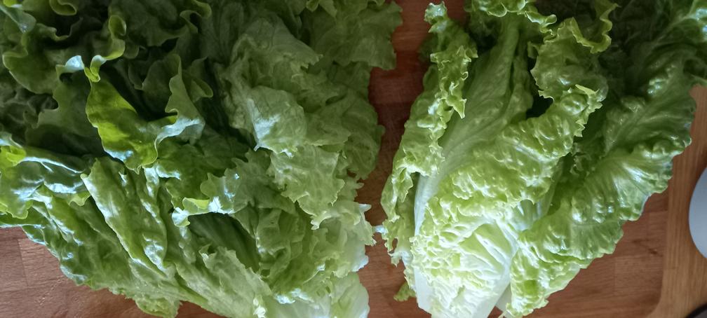μαγειρίτσα νηστίσιμη χορτοφαγική - 6
