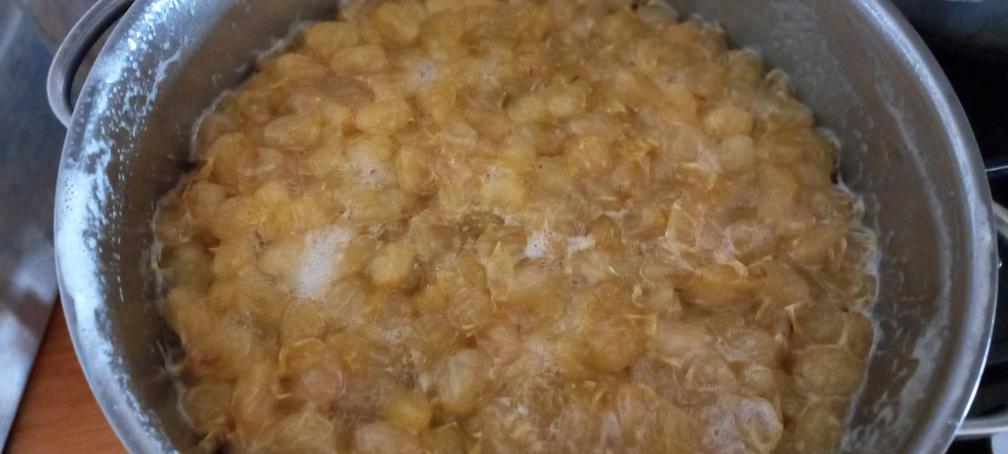 γλυκό κουταλιού σταφύλι - 20